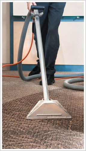 professional carpet cleaning in action